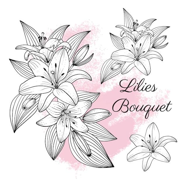 エレガントなユリの花のコレクション Premiumベクター