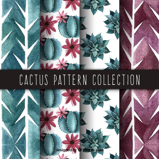 Elegant pack of watercolor cactus patterns Free Vector