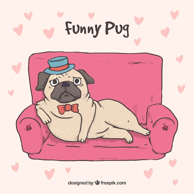 Elegant pug concept with hand drawn\ style