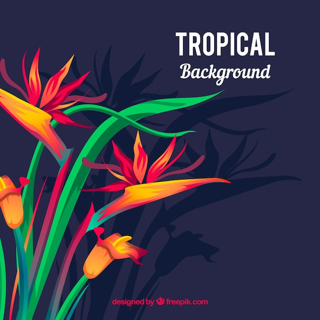 Elegant tropical flower background