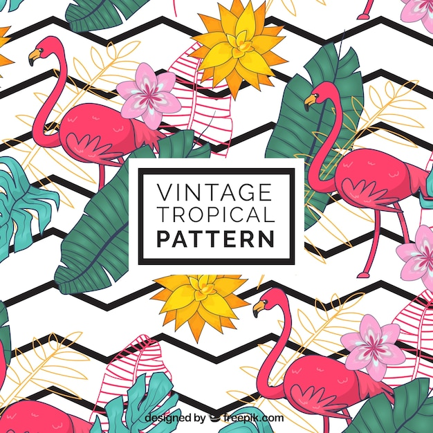 Elegant tropical pattern with vintage style Free Vector