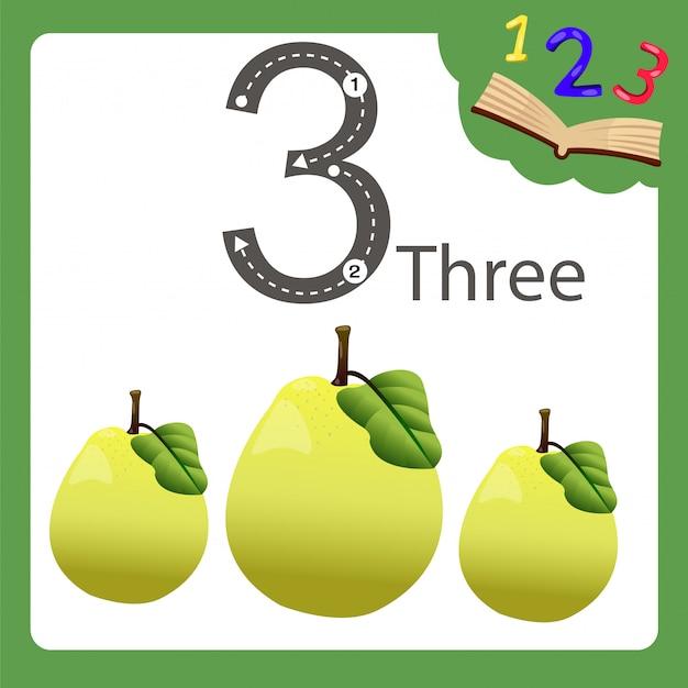 Elements of three number quince Premium Vector