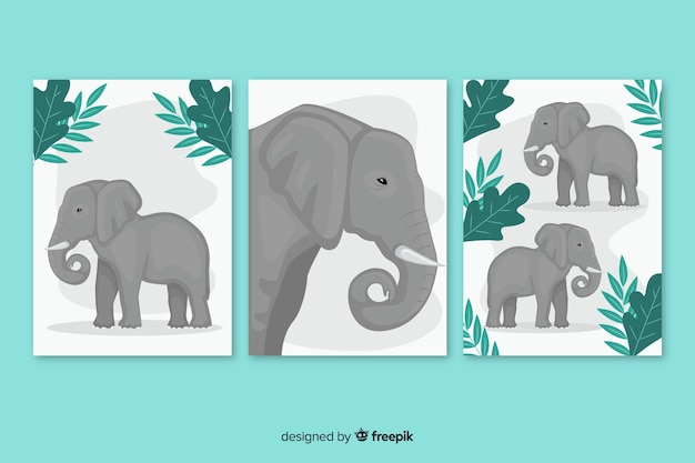 Elephant card collection flat design Free Vector