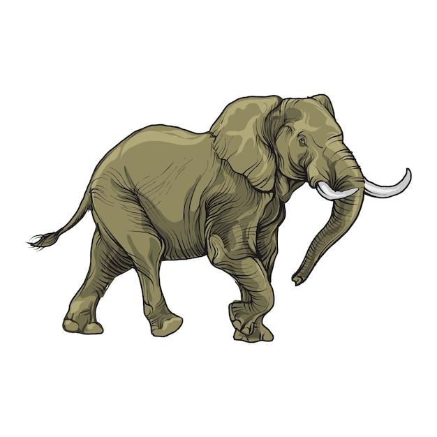 Elephant figure isolated. Premium Vector