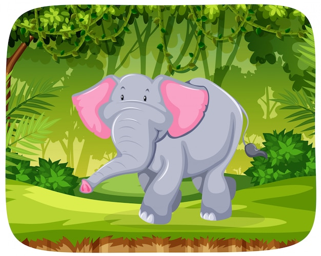 Elephant in the jungle Free Vector