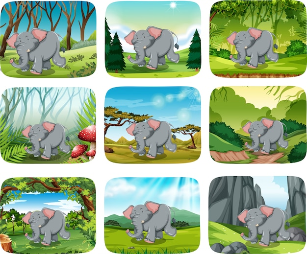 Elephant running in the forest Premium Vector