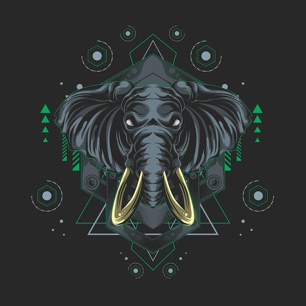 Elephant sacred geometry Premium Vector