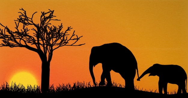 Elephant silhouettes in africa Premium Vector