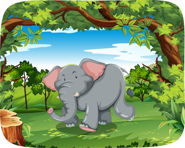 Elephant in the wild Free Vector
