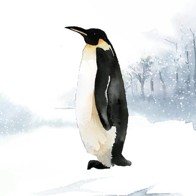 Emperor penguin in the snow watercolor vector Free Vector