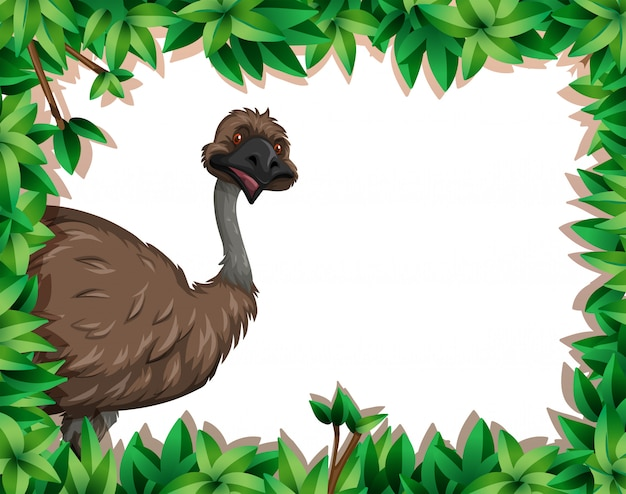 An emu in nature frame Free Vector