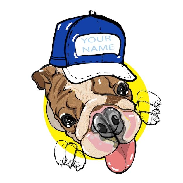 English bulldog by hand-drawing Premium Vector
