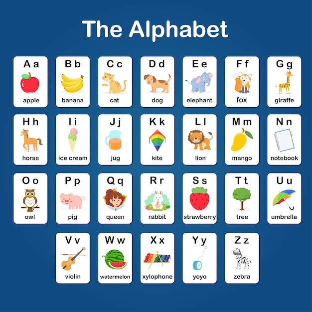English vocabulary and alphabet a - z flash card for kids to help learning and education in kinderga