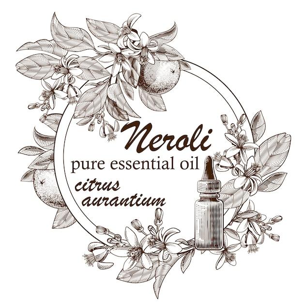 Эфирное масло с гравировкой и апельсиновыми плодами, листьями и цветущими цветами Бесплатные векторы