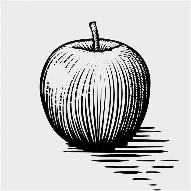 Engraved illustration of an apple Premium Vector