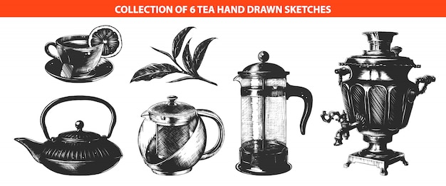 Engraved style tea drink collection Premium Vector