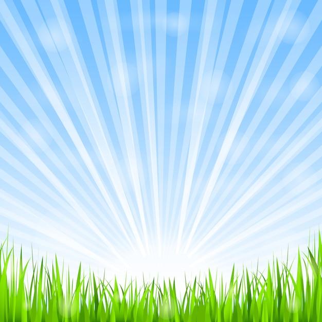 緑の芝生と輝く太陽、ベクトルeps10イラスト Premiumベクター