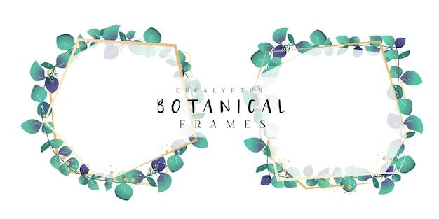 Eucalyptus botanical frames Premium Vector