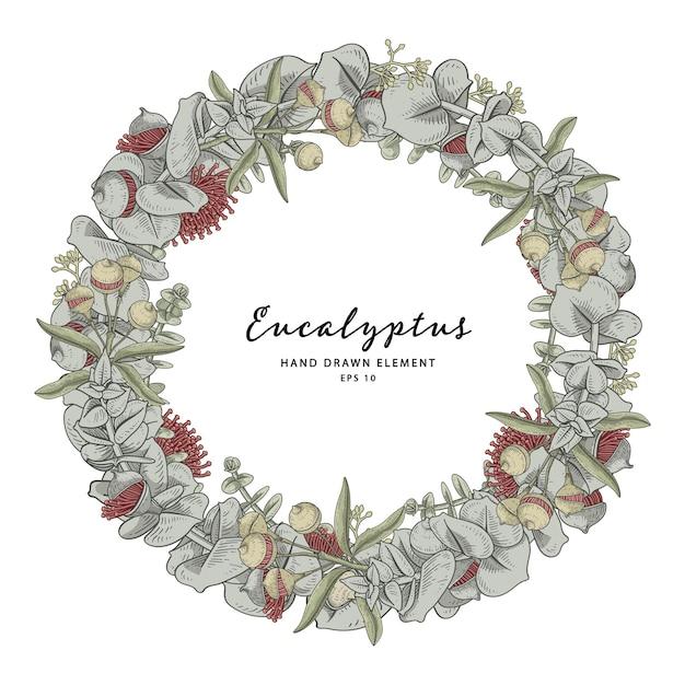 Eucalyptus plant wreath circle frame wreath Premium Vector