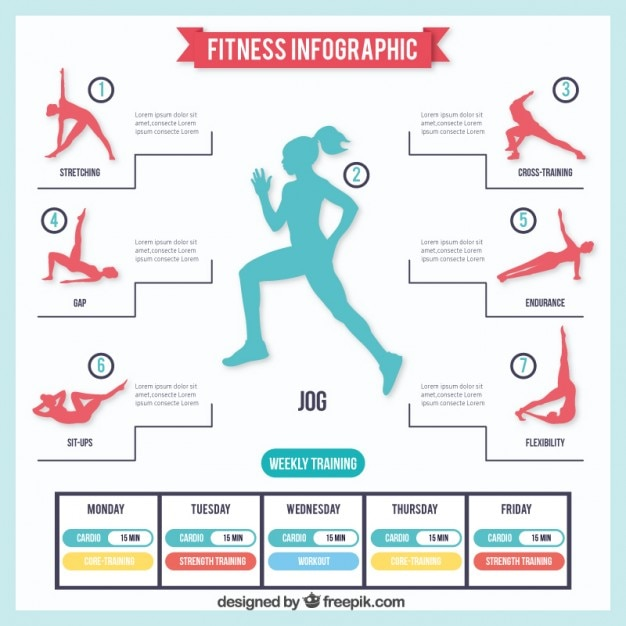 Exercise Plan Infographic Vector  Free Download