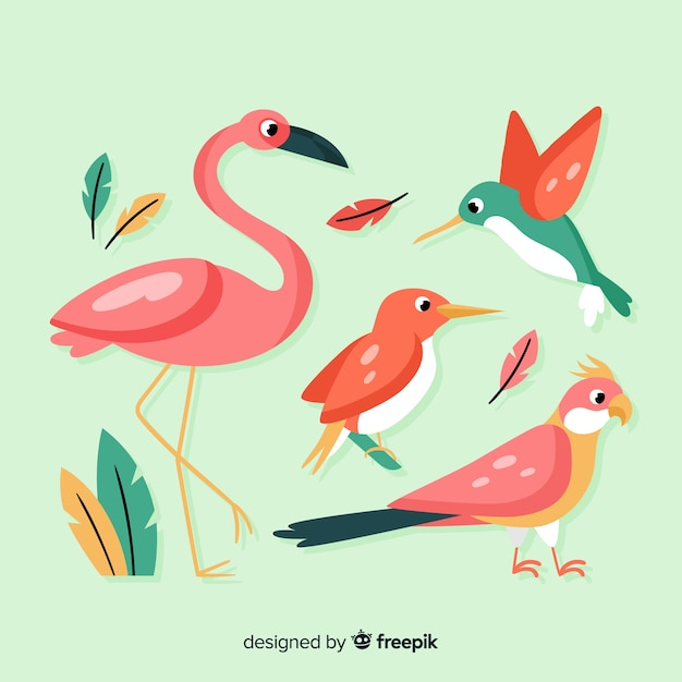 Exotic bird collection flat style Free Vector