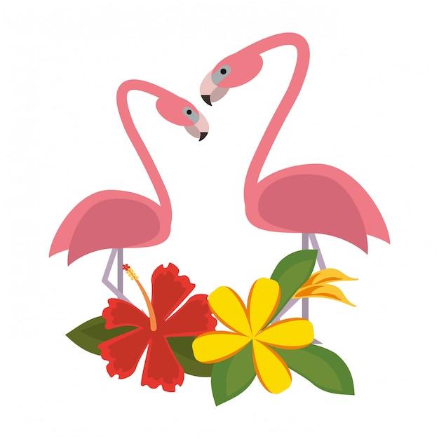 Exotic birds cartoons Premium Vector