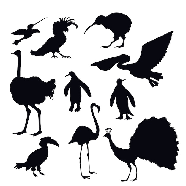 Exotic birds silhouettes Premium Vector