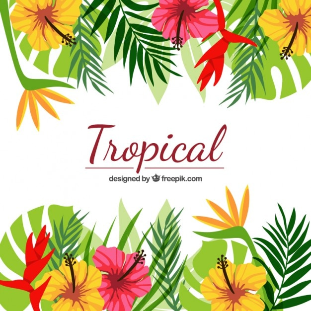 hand painted tropical flowers vector  free download, Beautiful flower