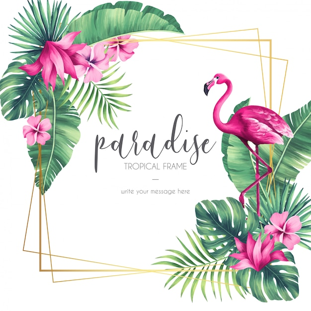 Exotic frame with tropical elements Free Vector