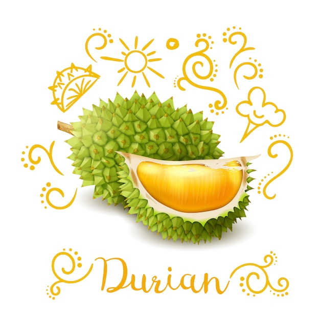 Exotic fruit durian doodles composition Free Vector