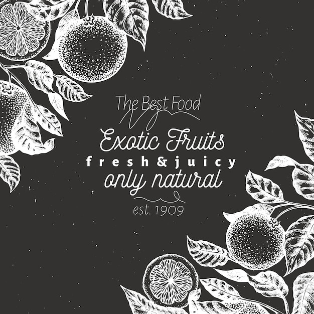 Exotic fruits background. hand drawn vector fruit illustration on chalk board. engraved style. retro citrus background. Premium Vector