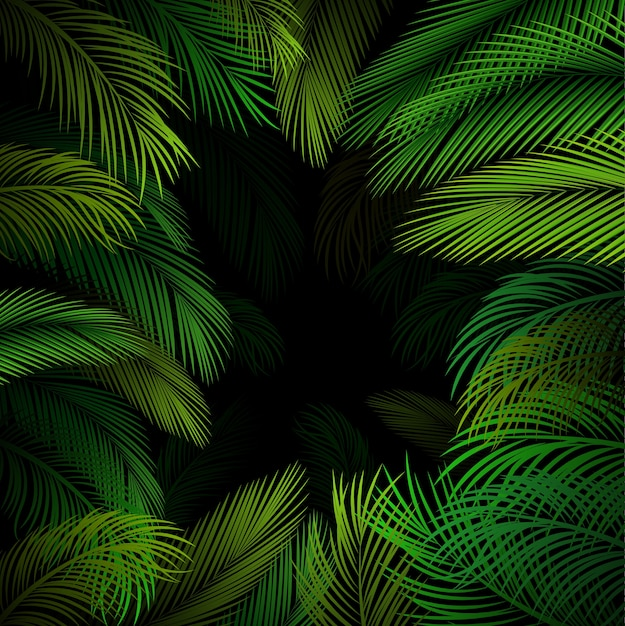 Exotic pattern with tropical palm leaves Premium Vector