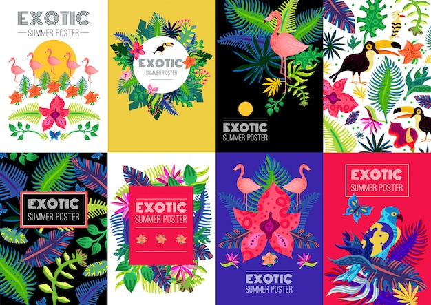 Exotic tropical colorful banners collection Free Vector