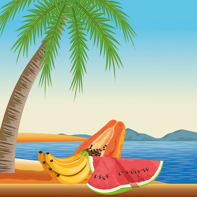 Exotic tropical fruit icon cartoon Free Vector