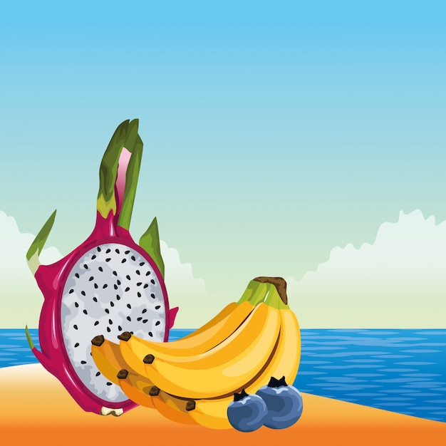 Exotic tropical fruit icon cartoon Free Vector