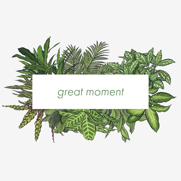 Exotic tropical leaves frame Free Vector
