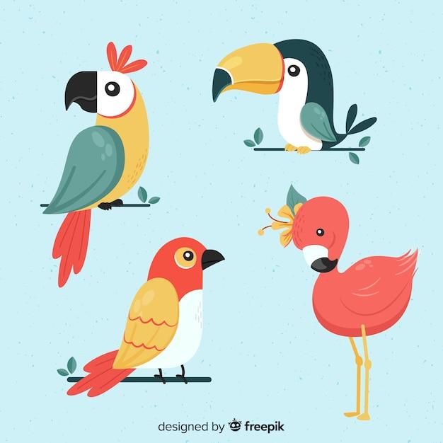 エキゾチックな熱帯の野鳥のコレクション Premiumベクター