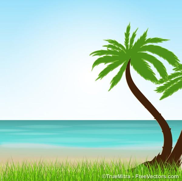 Exotic vacation landscape summer\ background