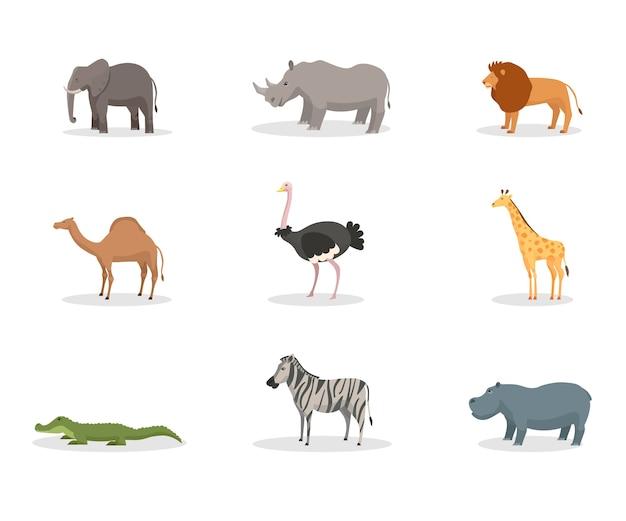 エキゾチックな野生動物フラットイラストセット。アフリカのジャングル動物、種の多様性、熱帯の自然保護区、動物園、野生生物保護区。象、サイの哺乳類、ライオン、ワニ Premiumベクター