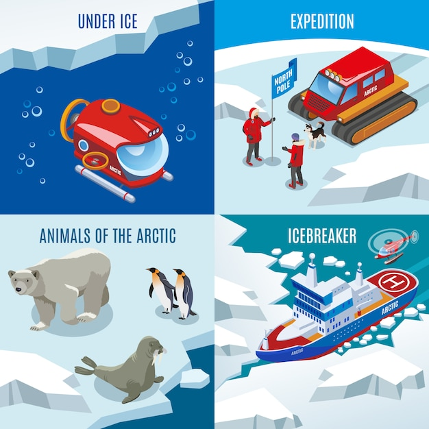 Expedition northern animals discoveries under frozen water ice breaker composition set Free Vector