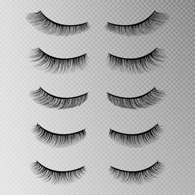 Eye lashes set Premium Vector