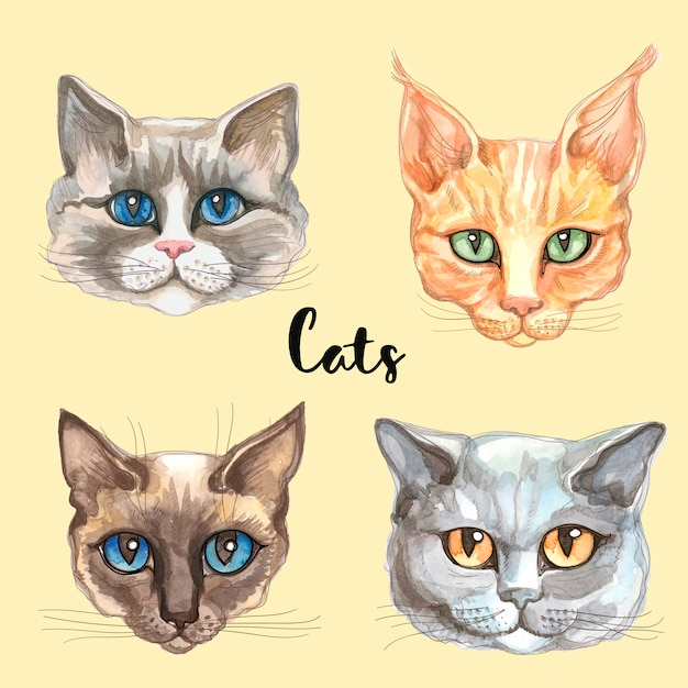 Faces of cats of different breeds Premium Vector