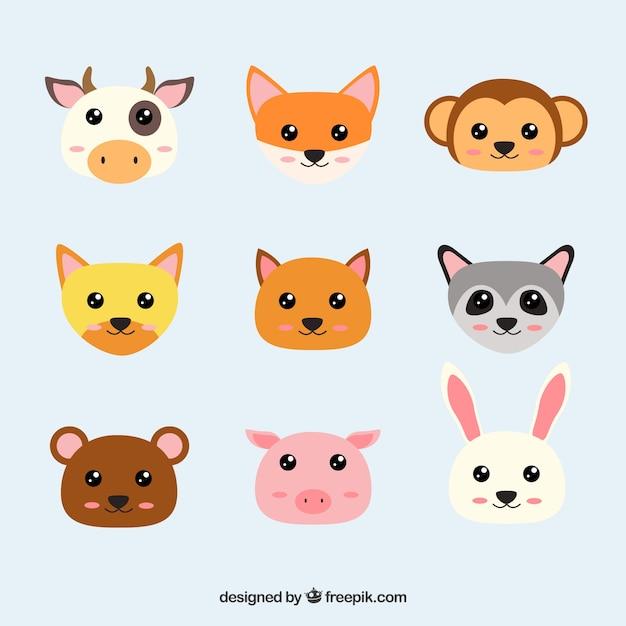 Faces of kawaii animals