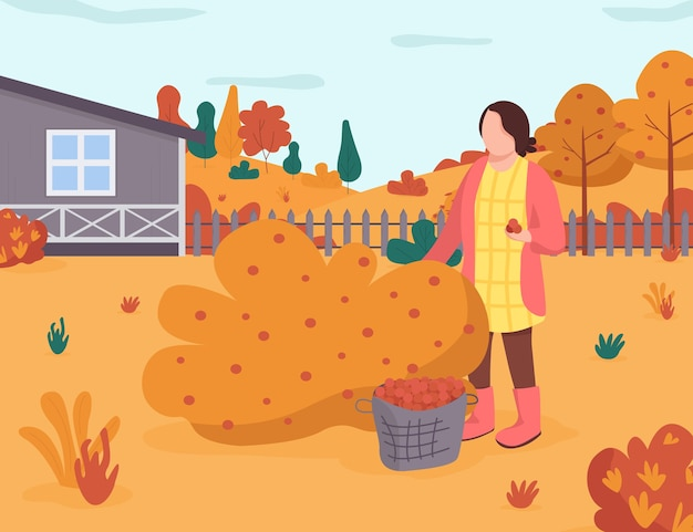 秋の庭のセミフラットイラスト。女性は茂みからベリーを取ります。裏庭での秋の収穫。田舎のレクリエーション。商業用の女性の庭師2d漫画のキャラクター Premiumベクター