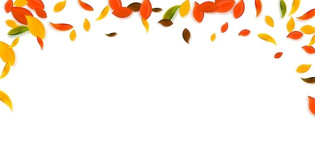 落ち葉。赤、黄、緑、茶色の混沌とした葉が飛んでいます。素晴らしい夕日の背景に降る雨のカラフルな葉。学校のセールに戻って魅了します。 Premiumベクター