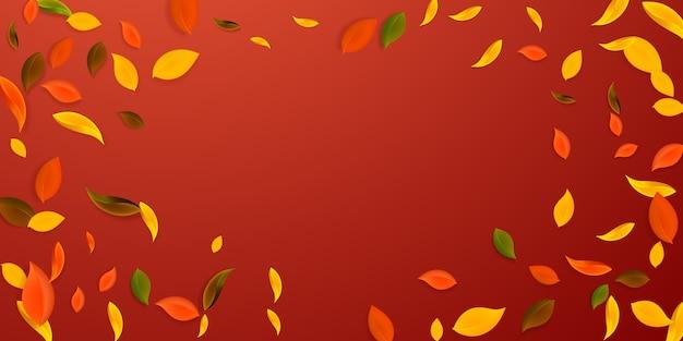 落ちてくる紅葉。赤、黄、緑、茶色の混沌とした葉が飛んでいます。 Premiumベクター