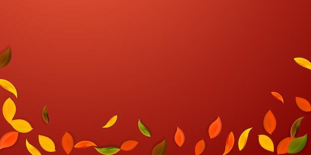 落ち葉。赤、黄、緑、茶色のきちんとした葉が飛んでいます。 Premiumベクター