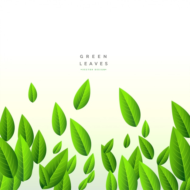 Falling green long leaves background Free Vector