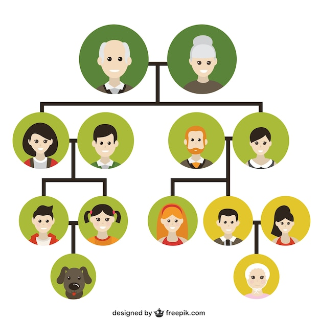 Family tree icons vector free download for 3d drawing online no download