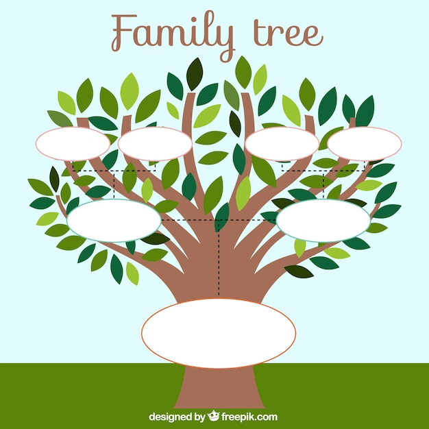 Family Tree Template With Leaves Stock Images Page Everypixel